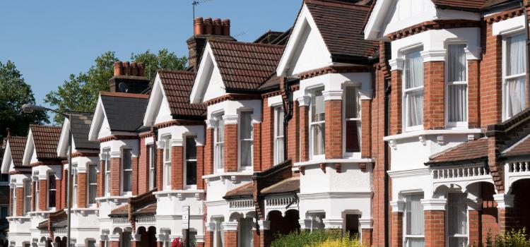 Booming Property & Digital Sectors